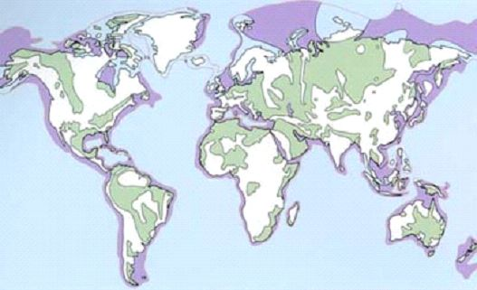 World map of sedimentary basins